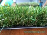 حقيقيّ ينظر [لنسكبينغ] عشب لأنّ متنزّه فناء