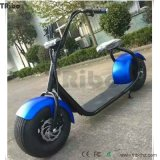 Elektrischer Roller-Straßen-zugelassener elektrischer Fahrrad-Roller-elektrische Roller-Hersteller