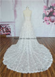Платье венчания типа шнурка планки спагеттиа Шампань сексуальное новое