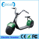 2016 nuovo Fashionable Two Wheel Electric Motorcycle per Adult (Esrover E5)