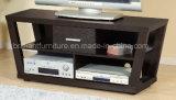 Stand des meubles TV de salle de séjour de qualité/Module (DMBQ016)