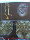 Grosses soldes! ! Medical Blue X-ray Film