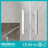 Doubles portes articulées de verre dépoli vendant la porte simple de douche en verre Tempered (SE706H)