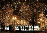 LED-Geschenk-Vorhang-Licht-im Freien Innendekoration