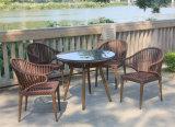 De nieuwe Koffie van de Rotan of het Dineren Vastgesteld OpenluchtMeubilair (ws-15598)