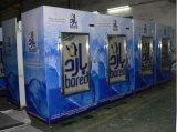 Parede fria ao ar livre escaninho de armazenamento ensacado do gelo para o uso do posto de gasolina