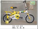 Цветастый Bike малыша для детей (LY-C-033)