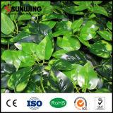 가정 정원 새로운 아이디어 성격 옥외 인공적인 녹색 식물 벽 담