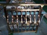 De Buis van de Decoratie van het Roestvrij staal van Empaistic voor het Traliewerk van de Trede