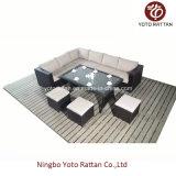 Sofa en acier de Tableau de rotin réglé (1104)