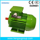 Motor eléctrico de la inducción Squirrel-Cage asíncrona trifásica de la CA de Ye3 75kw-4p para la bomba de agua, compresor de aire