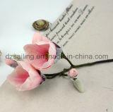 Искусственний цветок Magnolia с покрытием ощупывания руки для Wedding декор /Home (SF15336)