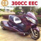Het nieuwe Rennen Trike ATV 250cc