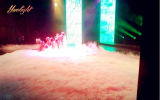 Fabrik-Preis FernContral 1500W LED Fogger