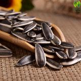 内蒙古のエクスポートのための新しい穀物のヒマワリの種363