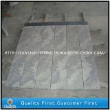 رأى الصين [جوبرنا]/رمز موجة صوان مجاعة [بف سلب] رخيصة