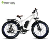 合金フレーム山9の速度500W 750Wの電気バイク