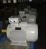 Индукции AC чугуна серии Y2 асинхронный двигатель трехфазной электрический