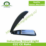 120W 150W 200W 250W Induction Street Light Road Lamp IP65 5years Warranty