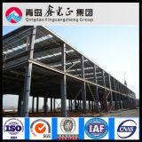 Fornitore professionale sul workshop d'acciaio prefabbricato (SS-14009)