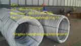 Стальной провод штанга с высоким качеством ASTM A29m 1008, 1010 GB 08f горячекатаным