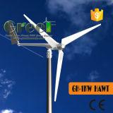 De hete Verkopende 1kw Horizontale Turbine van de Wind van de As voor Huis