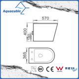 Le mur a arrêté la toilette en céramique affleurante duelle de lavage à grande eau (AA5257B)