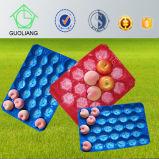 Bandeja plástica del embalaje de la fruta y verdura amontonable de la visualización del supermercado