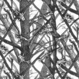 Kingtop 1mの幅のカムフラージュデザイン水転送の印刷のフィルムWdf130-1