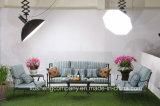 Nuovo insieme del sofà di posizioni della fusion d'alluminio di stile tre