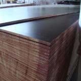 Contreplaqué de pin de cloison de 12 mm