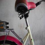 La vendita calda ha guidato la serie della bici (MTB-009)