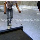 Torched sulla membrana d'impermeabilizzazione termoresistente del tetto