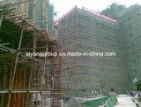 La película hizo frente al fabricante/a la construcción de Shandong de la madera contrachapada