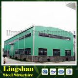 Lingshan prefabricó el almacén de la estructura de acero (LS-S-061)