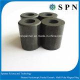 Magnete di ceramica del ferrito permanente per il motore facente un passo