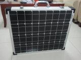 80W pliant le panneau solaire pour la caravane en vacances