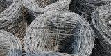 I doppi fili hanno galvanizzato il filo dal fornitore della Cina