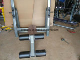 Fitness Gym Equipment Machine Utility Bench