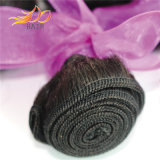 加工されていないカンボジアのバージンの毛の緩い波の人間の毛髪の織り方