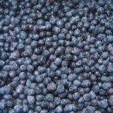 個々の急速冷凍のブルーベリーZl-1048