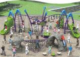 Openlucht het Beklimmen van de Kinderen van Kaiqi OpenluchtdieSpeelplaats met Verscheidene Spelen van het Spel wordt gecombineerd (KQ60130A)