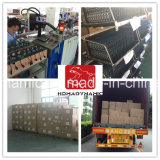 Farol H8/H9/H11 8000lumen do diodo emissor de luz da ESPIGA do modelo novo