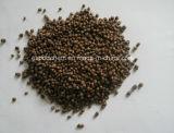 Le meilleur prix du phosphate 18-46-0 DAP de diammonium