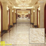 800X800 Snow White/Ivory White Floor Tile para Sale (D8009)