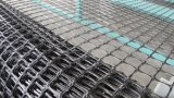 Plastic Lopende band PP/Pegeogrid