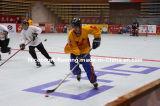 Azulejo de suelo perfecto de la corte del hockey de la pista de la velocidad y de la fricción de la larga vida (oro/plata/bronce del hockey)