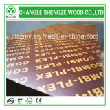 Aufbau-Grad Concret Arbeits-Furnierholz 18mm
