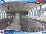 닭을%s Prefabricated 가금 건물 또는 돼지 또는 가축 또는 말 집 (FLM-F-018)