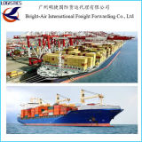 Transporte ultramarino do mar da carga da associação do transporte de frete de China a Melbourne, Austrália